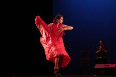 Viva Flamenco, con la direccion de Leticia Cosio, regresa al Teatro de la Ciudad Esperanza Iris con el espectaculo Impulsos, mayo 2016