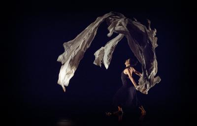 Beatriz Madrid: Festival de Danza Contemporanea Unipersonal Cuerpo al Descubierto Miguel Angel Palmeros, Teatro Benito Juarez, febrero 2017
