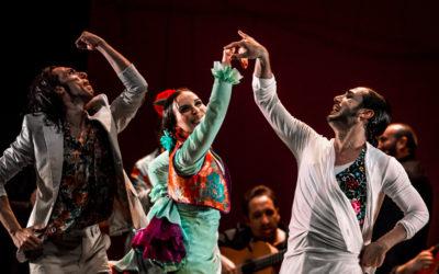 Las Minas Puerto Flamenco T de la Ciudad febrero 2017 1 A