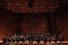 Orquesta Filarmonica de la Ciudad de Mexico, enero 2018