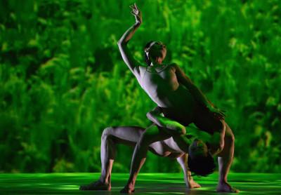 Cloud Gate Dance Theatre, dirigida por Lin Hwai-min, presenta Rice en el Palacio de Bellas Artes, febrero 2018