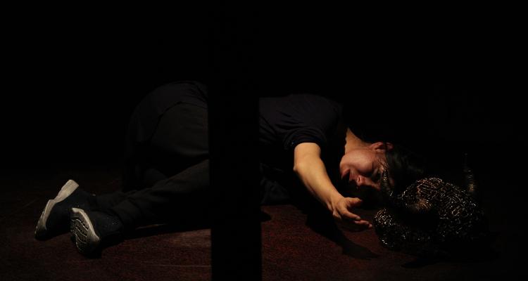 Minotauro, obra de Patricia Yanez y dirigida por Octavio Michel. Foto Enrique Diaz. Febrero 2019