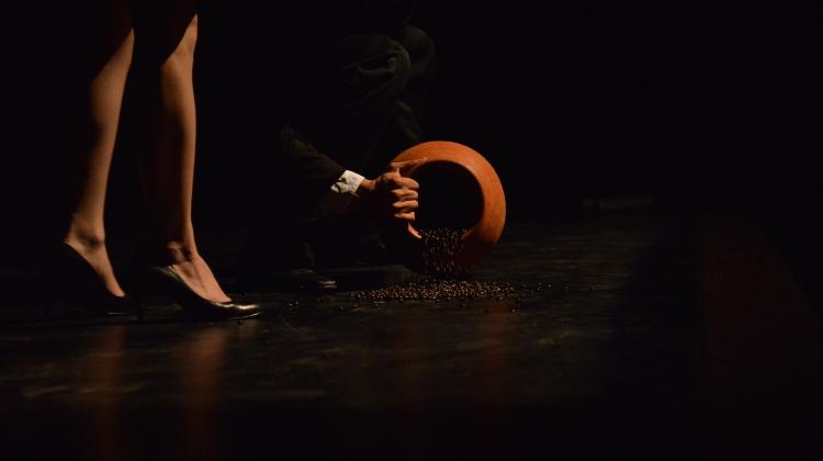 Pulmon Danza Teatro lleva a escena Stickiness, o la sinuosa tarea de desarraigar, obra interdisciplinaria de Constanza Amparan Hernandez y Octavio Ahmic. Foto Pato Rivera.